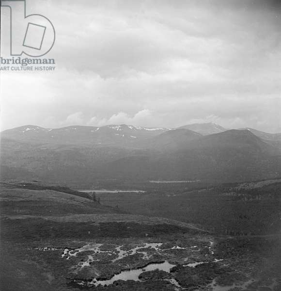 """The marshy terrain of the Highlands of Aberdeenshire. Water filtered by the peat bog and heather moors will trickle its way down the mountin side in to """"burns"""". This pure soft water becomes one of the main ingrediants in the production of Scotch Whisky. Circa 1960"""