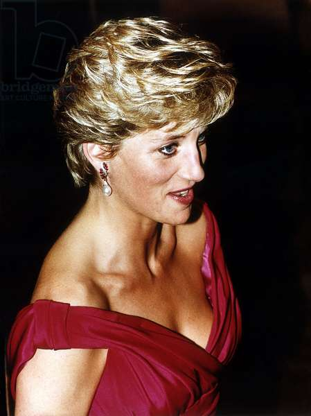 Princess Diana Visits Japan, November 1990 (photo)