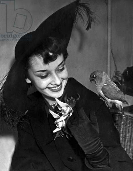 Audrey Hepburn at The National Exhibition of Cagebirds, January 1949 (b/w photo)