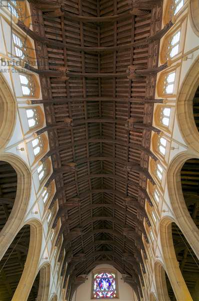 A view of the angel roof at St. Mary's, Bury St. Edmunds, Suffolk, Mid 15th century (photo)