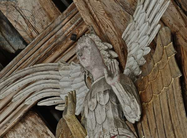 Close up of an angel from the angel roof at St. Agnes, Cawston, Norfolk, 15th century (photo)
