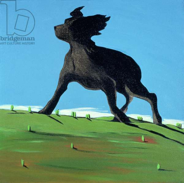 Amazing Black Dog, 2000 (acrylic on canvas)