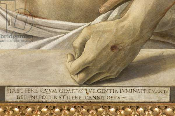 Pieta, or Dead Christ supported by the Virgin and St John, 1467-70 - DETAIL - The Hand of the Dead Christ - Painting by Giovanni Bellini dit il Giambellino (1430-1516), 1465. Pinacoteca di Brera, Milan.