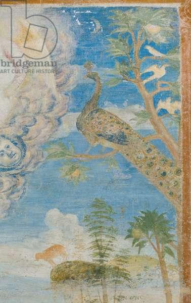 Peacock, detail of 3496206 (fresco)