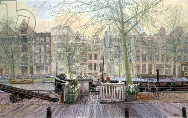 The Window Cleaner's Front Garden, Amsterdam (oil on canvas)