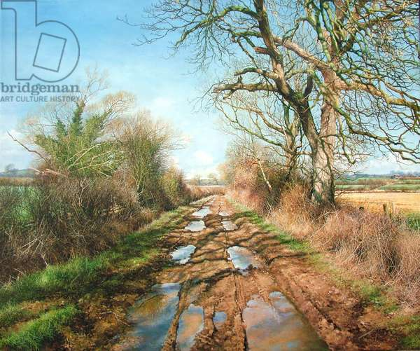 Wet bridle-path (oil)