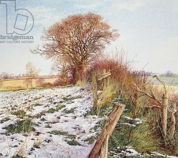 Late Snow in Fields, Near East Haddon (w/c and acrylic on paper)