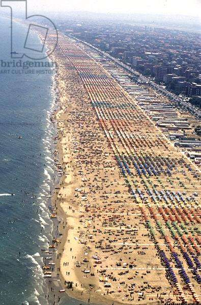 Aerial view of the beach (photo)