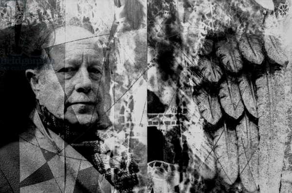 Nicolas Roeg Collage (b/w photo)