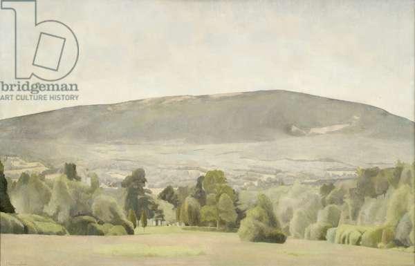 Race Mountain, 1976 (oil on canvas)