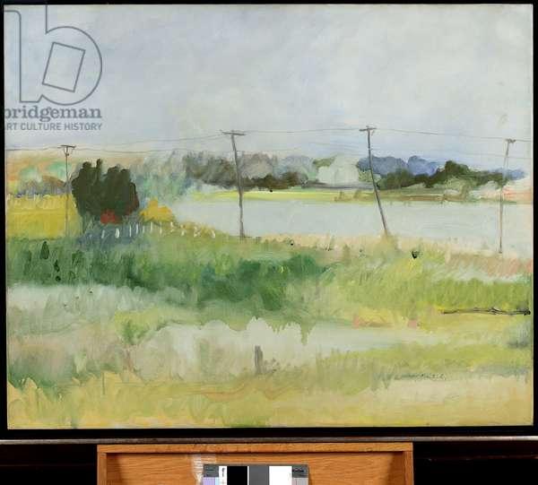 Telephone Poles, 1963 (oil on canvas)