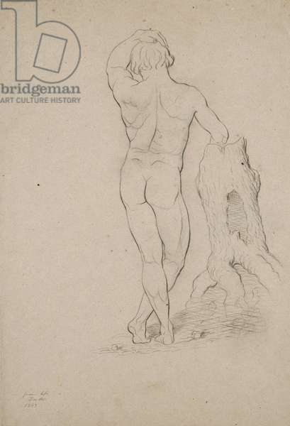 Untitled - Male nude, posterior view, 1846 (charcoal on brown wove paper)