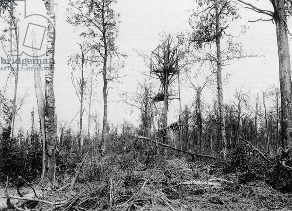 German observation post in Mametz Wood, 10 August 1916 (b/w photo)