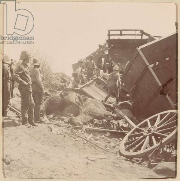 Picking out the dead horses of the 66th Field Battery Royal Artillery at the railway accident Kaap Minden, 9 October 1900 (b/w photo)