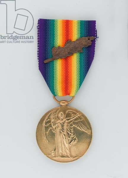 Allied Victory Medal 1914-19, Lieutenant Frank Alexander de Pass, 34th Prince Albert Victor's Own Poona Horse (metal)