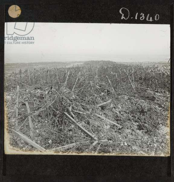 Wire entanglements in front of the Hindenburg Line near Heninel, 3 May 1917 (lantern slide)