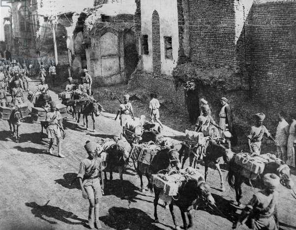 Indian donkey transport, New Street, Baghdad, 1917 (b/w photo)