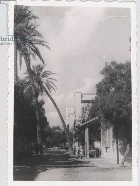 View of Benghazi, Libya; from an album of 351 photographs compiled by Bdr William Samuel Hoare, 1941-45 (b/w photo)