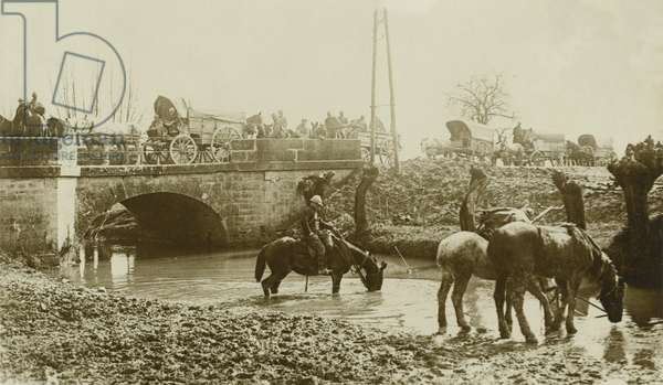 A French Convoy halted to Water the Horses, 1916 (b/w photo)