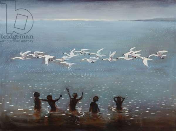 Swans, 2013 (oil on linen)
