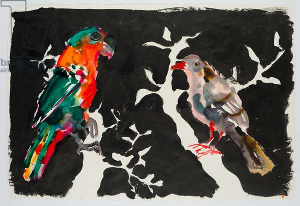 Parrot and Pigeon, 2017