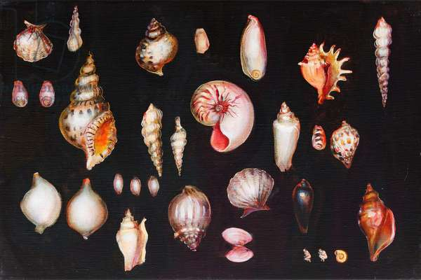 Collection, 2011 (oil on linen)