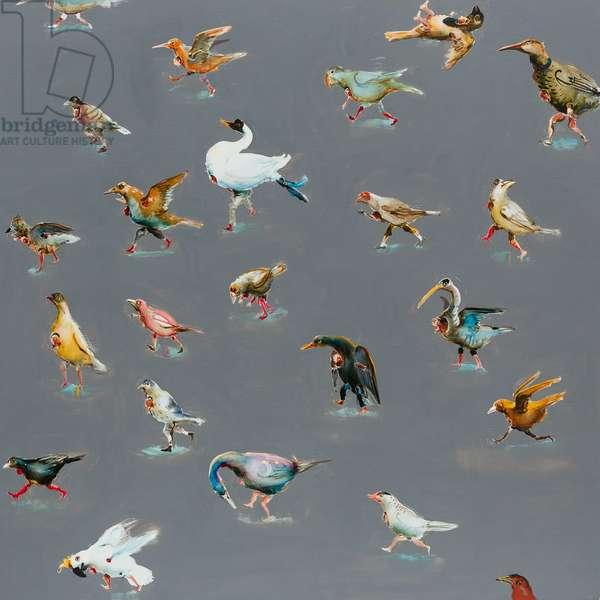 Bird race, 2014 (oil on linen)
