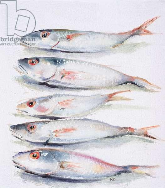 5 Sardines, 2006 (oil on canvas)