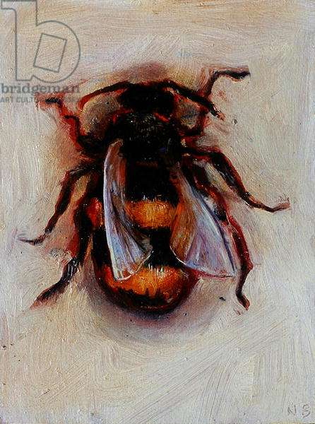 Bumble Bee, 2006 (oil on canvas)