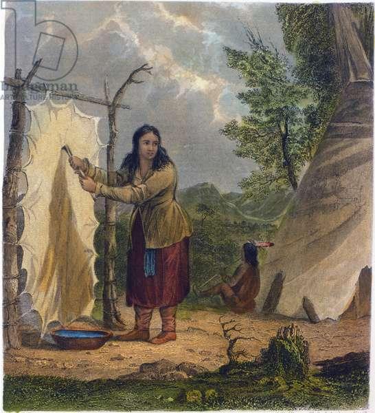 Buffalo Skin, 1853 (colour litho)