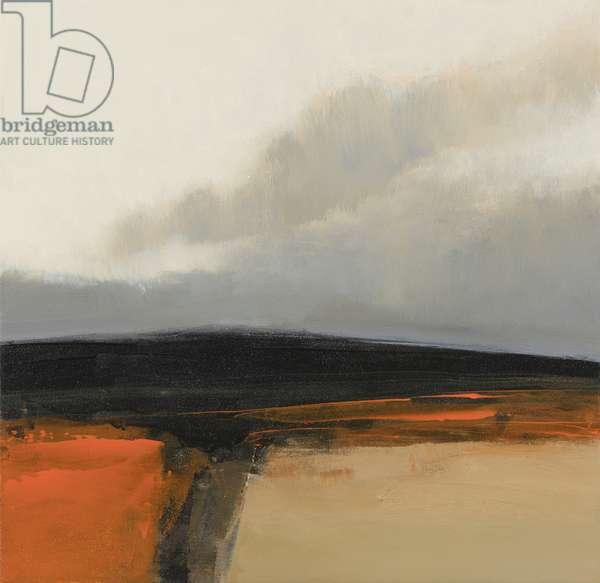 Landform - Light Fields, 2016 (mixed media on panel)