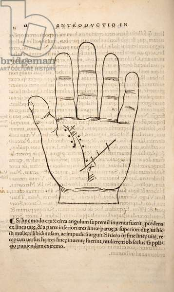 Illustration from 'Chiromantia' by Joannes Indagioe, Strasbourg, 1531 (print & engraving)