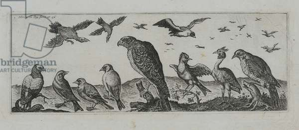 Old Master Engraving (engraving)