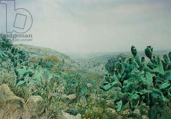 View from Dibbin National Park, Jordan, 1984 (w/c and pastel on handmade paper)