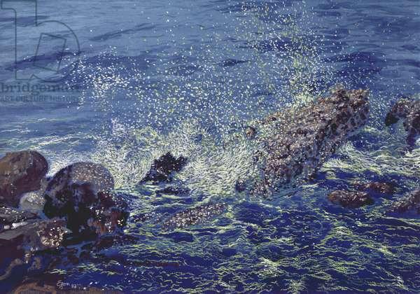 Sea Spray, Katarraktis, Chios, 1993 (w/c and pastel on handmade paper)