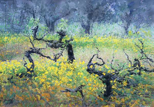 Vines, 2000 (w/c and pastel on handmade paper)