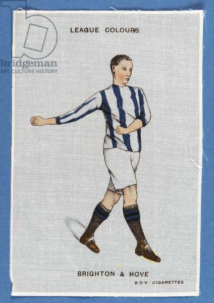 League Colours - Brighton & Hove (ink on silk)