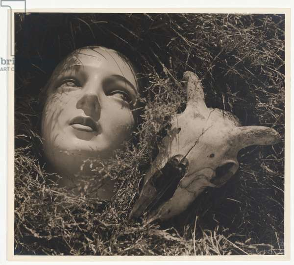 Doll's head and goat's skull, c.1937 (gelatin silver photo)