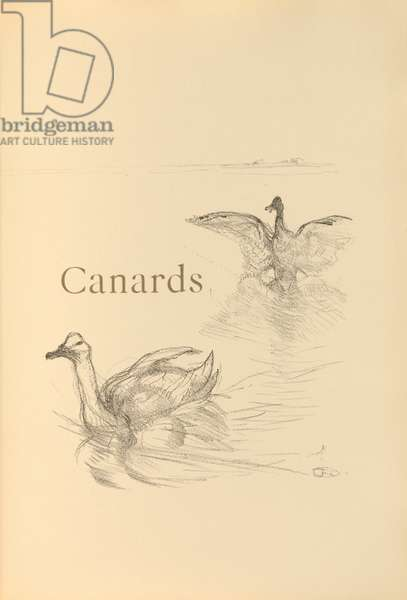 Canards, illustration from 'Histoires naturelles' by Jules Renard, 1897 (brush transfer litho)
