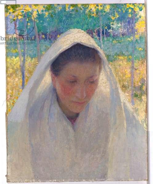 Sunlight effect, c.1889 (oil on canvas)