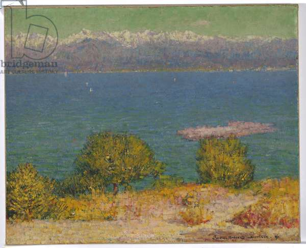 Landscape, Antibes, 1891 (oil on canvas)