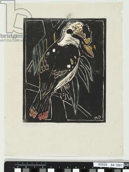 Kookaburra, 1930 (hand-coloured litho)