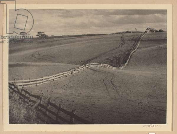 The fence, c.1938 (gelatin silver photo)