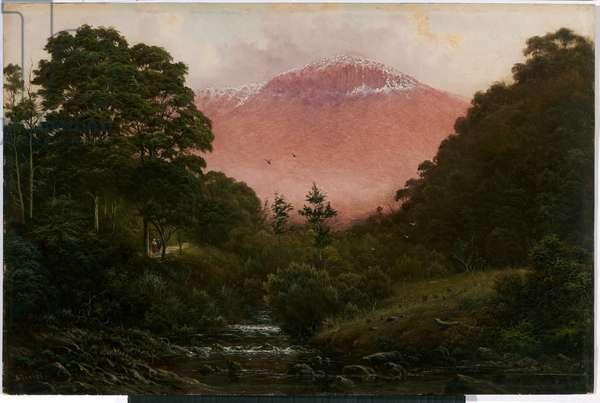 Mount Wellington from Cascades, c.1885 (oil on cardboard)