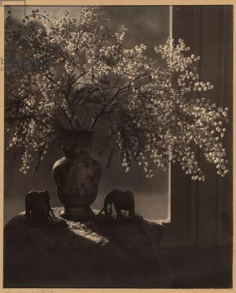 Filtered light, 1952 (gelatin silver photo)