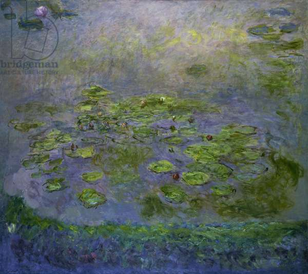 Nympheas, c.1914-17 (oil on canvas)