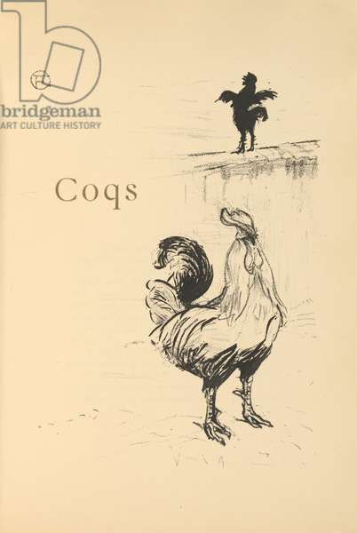 Coqs, illustration from 'Histoires naturelles' by Jules Renard, 1897 (brush transfer litho)