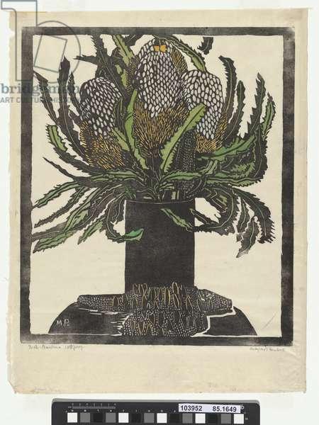West Australian Banksia, 1929 (colour woodcut)