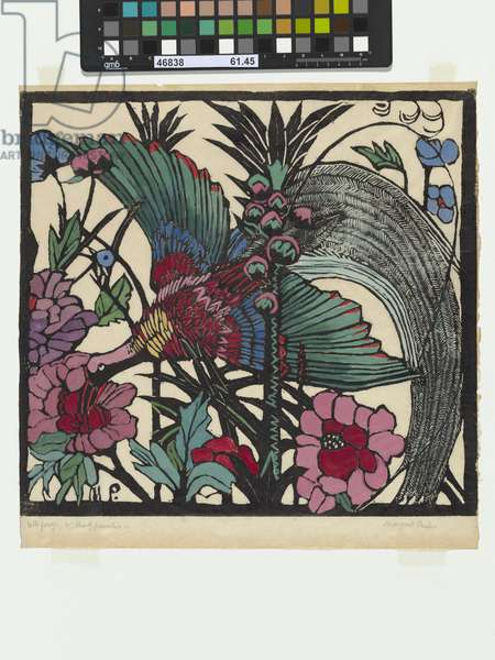 Bird of Paradise, 1925 (hand-coloured woodcut)