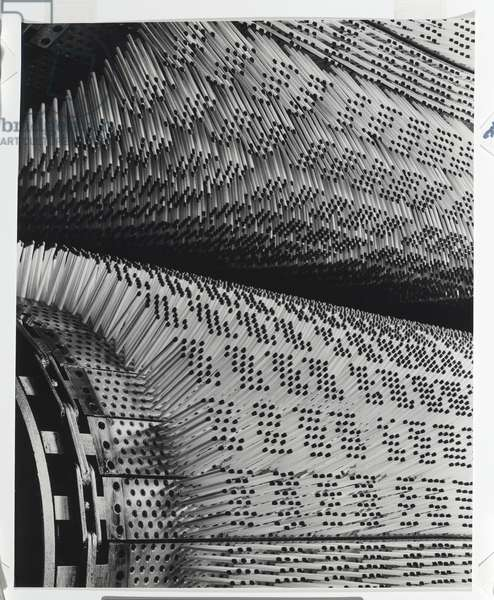 Manufacture of matches at Bryant and May, Melbourne, 1939 (gelatin silver photo)